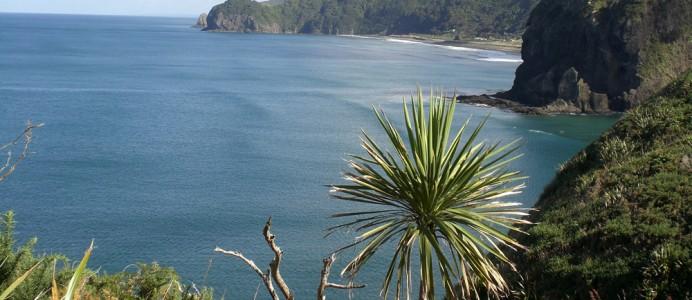 Credits: True New Zealand Adventures
